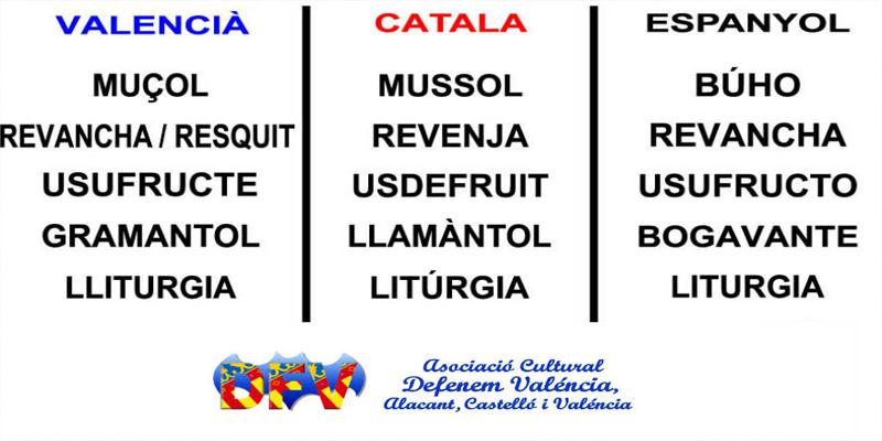 COMPARA VALENCIANO CON CATALÁN Y ESPAÑOL